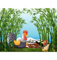 A rooster and a hen at the rainforest vector image vector image