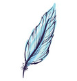blue feather on white background vector image vector image