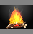 campfire with hot flames on black background vector image vector image