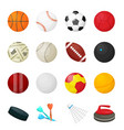 game balls flat sport equipment for soccer vector image