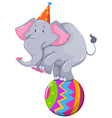Happy elephant balancing on ball vector image
