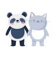 little cat and panda cartoon character on white vector image