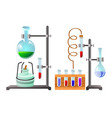 vials with liquid reagents chemistry lesson in vector image