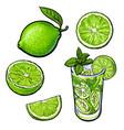 whole half quarter lime and glass of lemonade vector image