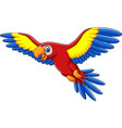 cartoon funny macaw flying vector image vector image