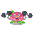 fitness peony flowers in a cartoon basket vector image vector image