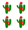 Funny christmas cacti on a whte background vector image vector image