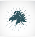 horse head on white background animal vector image vector image