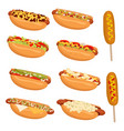 hot dog set collection american hot dog vector image