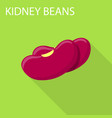 kidney beans icon flat style vector image vector image