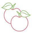 two fruit fresh apple diet nutrition vector image
