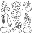vegetables doodles vector image vector image