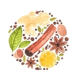watercolor circle design made of spices for vector image