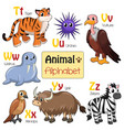 alphabet animals from t to z vector image vector image