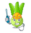 automotive fresh cabbage kohlrabi on the mascot vector image vector image