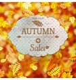 Autumn Sale template EPS 10 vector image vector image