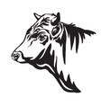 contour portrait bull in profile vector image vector image