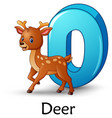 letter d is for deer cartoon alphabet vector image