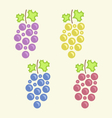 set colorful bunches grape vector image