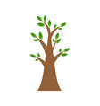 tree flat icon isolated on white background vector image