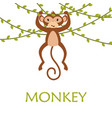 card with cute funny monkey vector image vector image