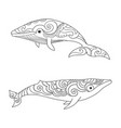 cartoon sea whale sketch doodle vector image