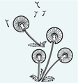 Dandelion on a wind vector image
