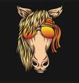 horsehorse eyeglasses bandana vector image vector image