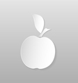 Origami apple vector image vector image