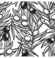 Seamless pattern with olive branch vector image vector image