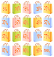 Shopping bags and discount vector image vector image