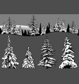 snowy coniferous tree set vector image vector image