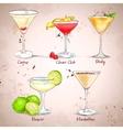 The Unforgettables Cocktail Set vector image