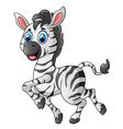 Zebra cartoon vector image