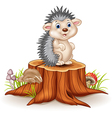 Adorable baby hedgehog sitting on tree stump vector image vector image