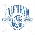 California Republic vintage typography with a vector image vector image