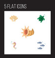 flat icon marine set of conch tortoise seashell vector image vector image