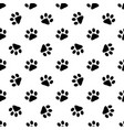 pattern with animal footprints vector image vector image