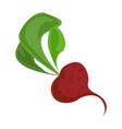 radish icon cartoon style vector image vector image