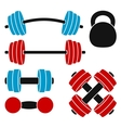 Athletic weights vector image vector image