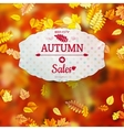 Autumn Sales Banner EPS 10 vector image vector image
