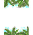 coconut leaves with drop water watercolor vector image