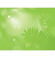 Green Fern vector image vector image