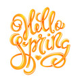 hello spring poster vector image