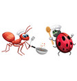insect chef cooking food vector image vector image
