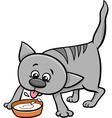kitten drinking milk vector image