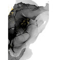 liquid black grey alcohol inkmarble texture fluid vector image vector image