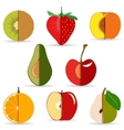 sliced fruit vector image