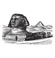 sphinx andro-sphinxes vintage engraving vector image vector image