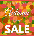 background with autumn leaves autumn sale vector image vector image